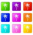palm tree set 9 vector image vector image