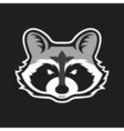 raccoons head logo for sport club or team animal vector image vector image
