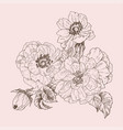 wild rose blossom branch isolated on pink vintage vector image vector image