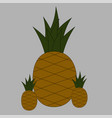 cartoon pineapples on grey background tropical vector image