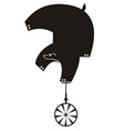 funny bear rides on unicycle isolated vector image vector image
