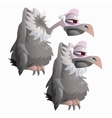 Funny bird vulture on a white background isolated vector image vector image