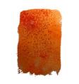 orange watercolor stain vector image vector image
