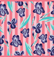 pattern with flowers irises on striped vector image vector image