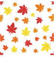 pattern with maples leaves vector image vector image