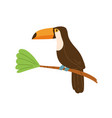profile cute toucan or tucan sitting on tree vector image