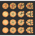 Set with different varieties of pizza Cut slices vector image vector image