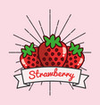 Strawberry fruit organic vitamins emblem