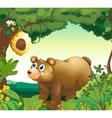 A big brown bear staring at the beehive vector image vector image