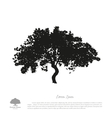 Black tree silhouette on a white background vector image vector image