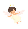 cute boy angel with nimbus flying with wings vector image vector image