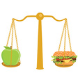 Diet healthy food concept vector image vector image