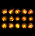 fire flames set on black background vector image