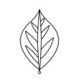 leaf ecology symbol vector image