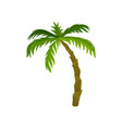 tall palm tree with large bright green leaves vector image