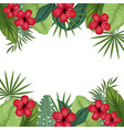 card hibiscus with palm leaves border vector image