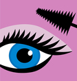 female eye mascara vector image
