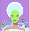 Beautiful woman Spa Facial Mask vector image