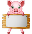 cartoon little pig holding blank board vector image vector image