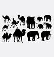 elephant african wild animal silhouette vector image