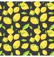 Green lemon fruits with leaf on branch dark black vector image vector image