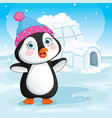 of baby penguin standing next vector image