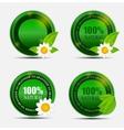 100 Natural Green Label Set vector image