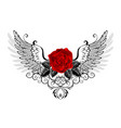 angel red rose vector image vector image