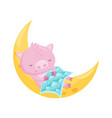 cute little pig sleeping on the moon lovely vector image vector image