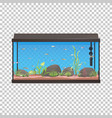 fish tank aquarium with fishes vector image
