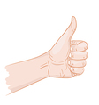 I like thumb up vector image