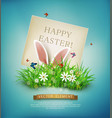 rabbit ears sticking out of the grass vector image vector image