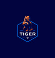 tiger is washing its paw vector image vector image