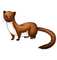 Weasel vector image vector image