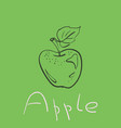 apple drawing simple hand drawn fruit with vector image
