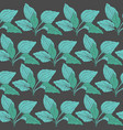 botanical seamless pattern with green plantain vector image vector image