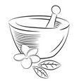 mortar and pestle with frangipani flower vector image