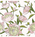 pink peony spring flowers seamless pattern texture vector image vector image