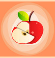 red apple with leaf top view slice vector image vector image
