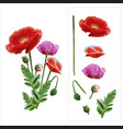 Set of colored mosaic poppies on white background