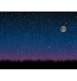 silhouette grass starry sky eps 10 vector image vector image