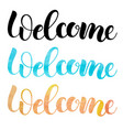 welcome isolated handmade watercolor lettering vector image vector image