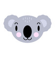 cute cartoon character koala print for baby vector image