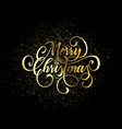 merry christmas wish greeting card gold vector image vector image