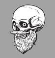 skull bearded hipster vector image