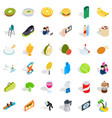 surf club icons set isometric style vector image vector image