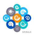 simple spiral icons vector image