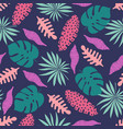 creative floral background tropical vector image vector image