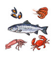 sketch seafood objects set isolated vector image