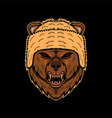bear angry head vector image vector image